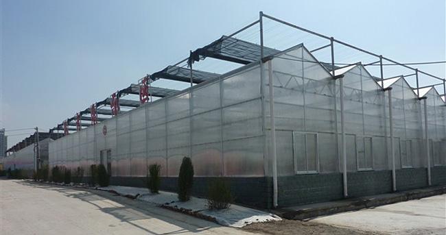 智能温室大棚展示
